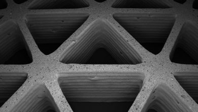 Photo of Harvard researchers mimic nature's cellular architectures via 3D printing of ceramic foam