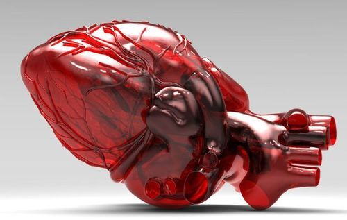 Surgeons in Nova Scotia Use 3D Printed Heart Model to