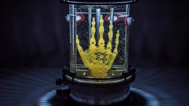 Photo of Bioartist Amy Karle Is Creating a 3D Bioprinted Hand with Real Skin on It
