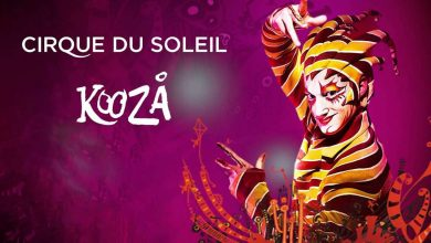 Photo of Cirque du Soleil Kooza Now Uses Taz 6 3D Printer to Make Props and Costumes