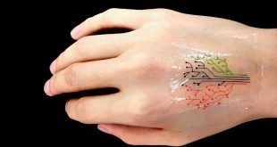 MIT Engineers 3D Print Programmed Cells Into a Living Tattoo / Video