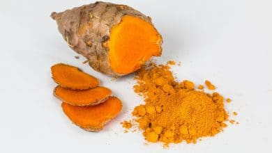 Photo of Turmeric improves bone regeneration properties of 3D printed ceramic bone implants up to 45%