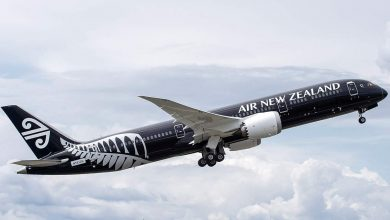 air new zealand moog