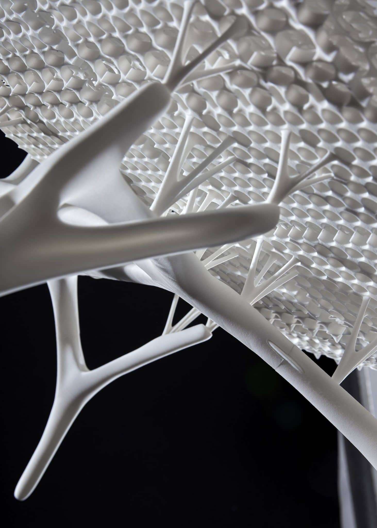 Radiolaria 3D printed chair
