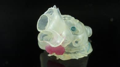 Materialise Stratasys medical models