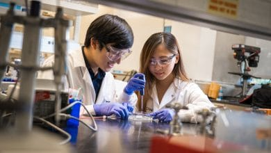 Photo of UC San Diego develops easy-to-use bioprinting process for vascularized networks