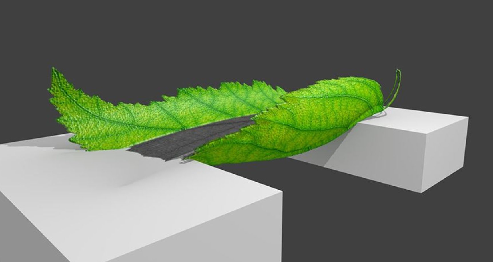 Finnish 3D printed Leaf Bridge shows potential of natural
