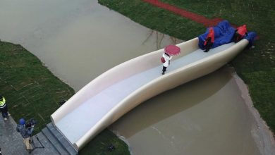 Shanghai 3D printed footbridge