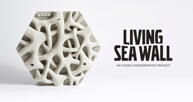 Living Seawall Volvo Reef Design Lab