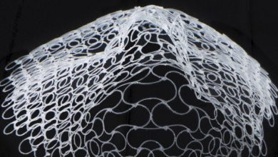 Photo of Harvard SEAS researchers 3D/4D print complex shape-shifting structures