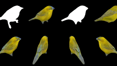 Photo of NVIDIA researchers train DIB-R AI to create 3D printable models from 2D images in milliseconds