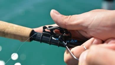 Photo of Gone fishing: FinMan leverages Carbon 3D printing for production