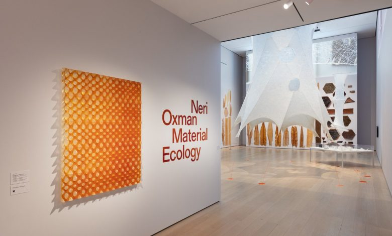 Photo of Tune in for a Q&A session with Neri Oxman on Material Ecology