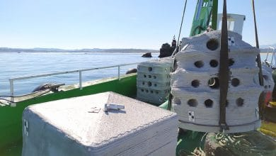 Photo of 3DPARE deploys 3D printed reefs off the coasts of England, France and Spain