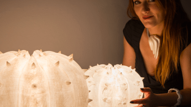 Photo of Serena Fanara: when 3D printing is at the service of creativity