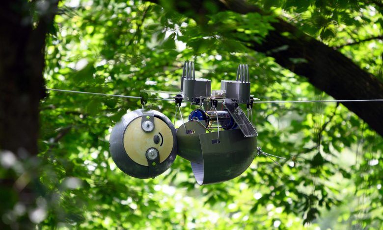 Photo of SlothBot is an adorable, eco-friendly 3D printed robot